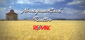 Normajean Kinch Realtor